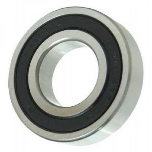 SKF Bearing 6205 6206 Zz 2RS Seal Type Original Deep Groove Ball Bearing 6207 6208 2z Price #1 image